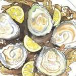 Pearls of Our Ocean: Sketching the Clarenbridge Oyster Festival