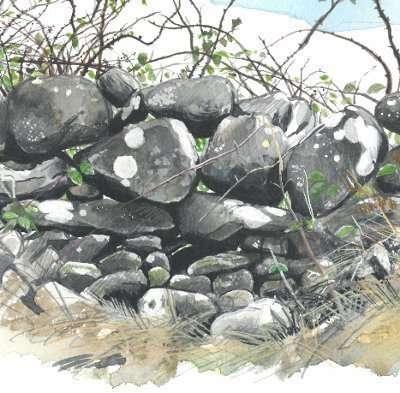 Beyond the N18: Hidden Kilcolgan  - Art Exhibition in Gort Library, 11th-17th October 2015