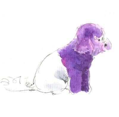 Banishing Bad Hair Days: Sketching at a Dog Grooming Championship
